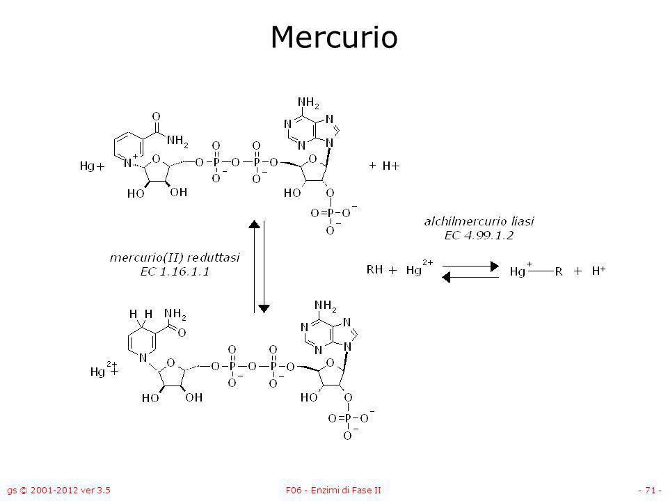 Mercurio gs © 2001-2012 ver 3.5 F06 - Enzimi di Fase II