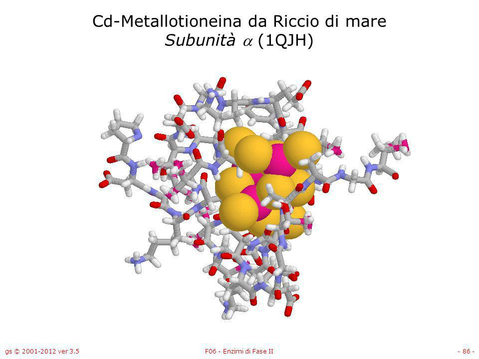 Cd-Metallotioneina da Riccio di mare Subunità a (1QJH)