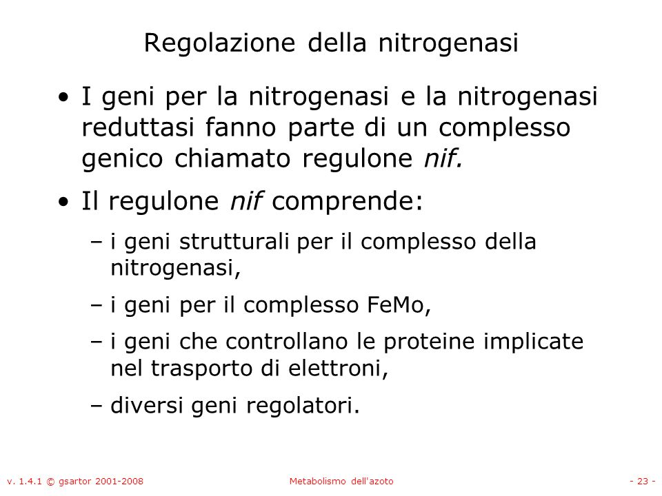 Regolazione della nitrogenasi