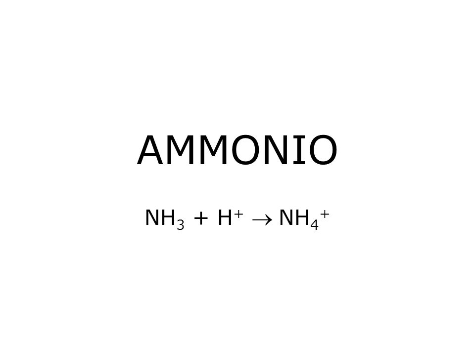 AMMONIO NH3 + H+  NH4+