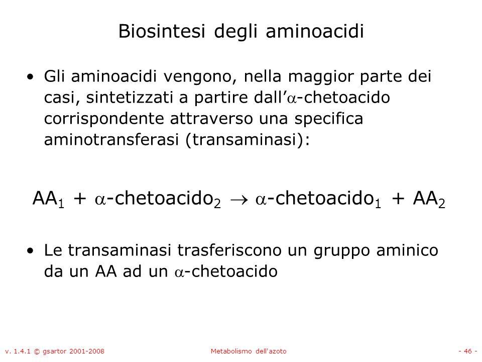 Biosintesi degli aminoacidi