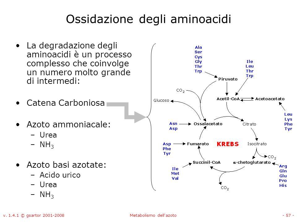 Ossidazione degli aminoacidi