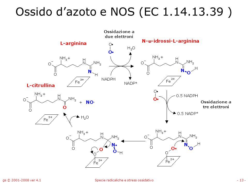Ossido d'azoto e NOS (EC 1.14.13.39 )