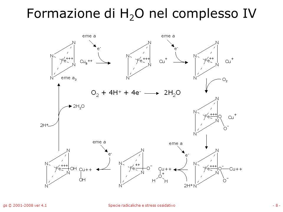 Formazione di H2O nel complesso IV