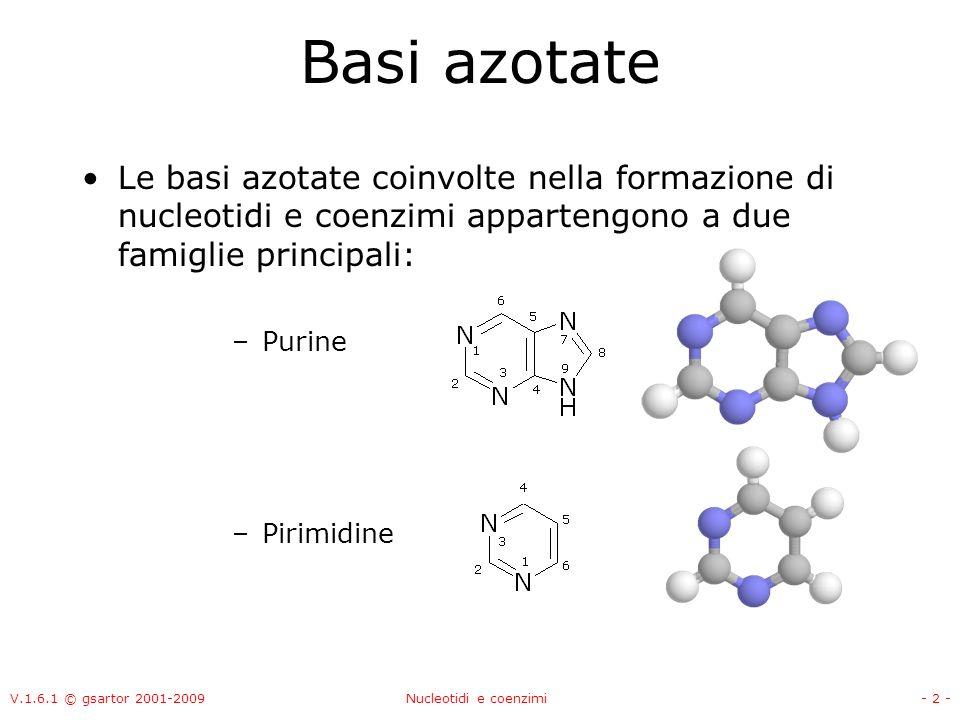 Basi azotate Le basi azotate coinvolte nella formazione di nucleotidi e coenzimi appartengono a due famiglie principali: