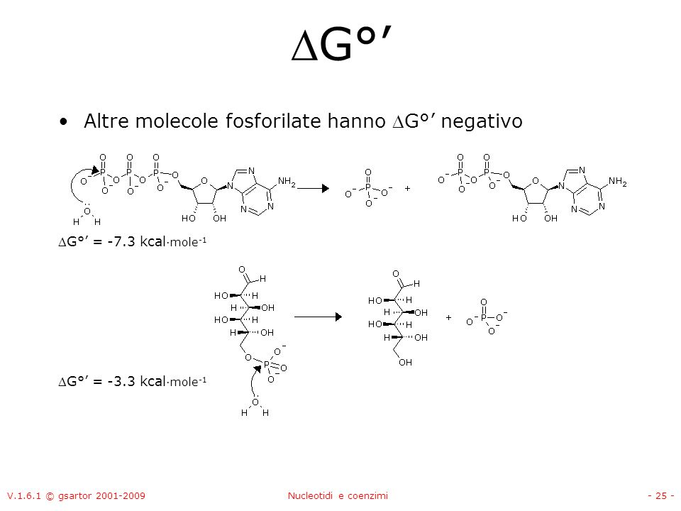 G°' Altre molecole fosforilate hanno G°' negativo