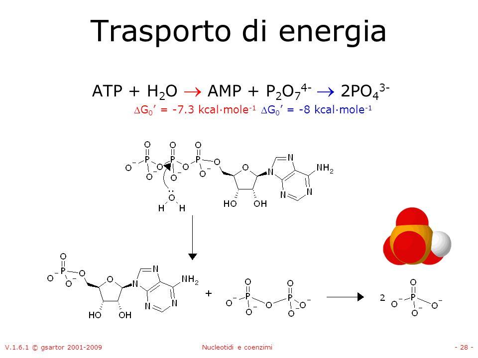 Trasporto di energia ATP + H2O  AMP + P2O74-  2PO43-