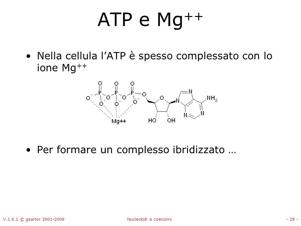 ATP e Mg++ Nella cellula l'ATP è spesso complessato con lo ione Mg++