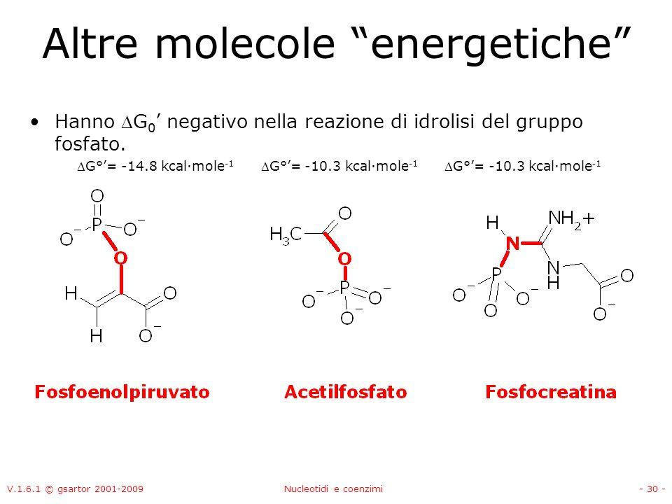 Altre molecole energetiche