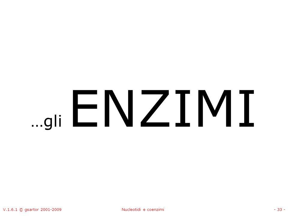 …gli ENZIMI V.1.6.1 © gsartor 2001-2009 Nucleotidi e coenzimi