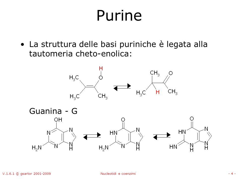 Purine La struttura delle basi puriniche è legata alla tautomeria cheto-enolica: Guanina - G. V.1.6.1 © gsartor 2001-2009.