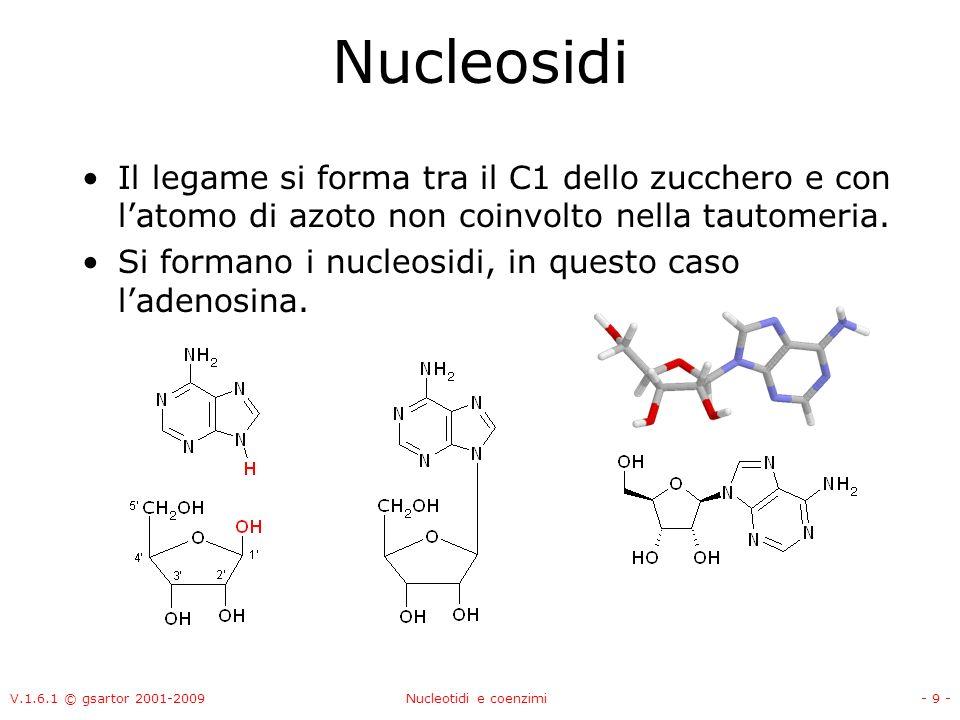 Nucleosidi Il legame si forma tra il C1 dello zucchero e con l'atomo di azoto non coinvolto nella tautomeria.