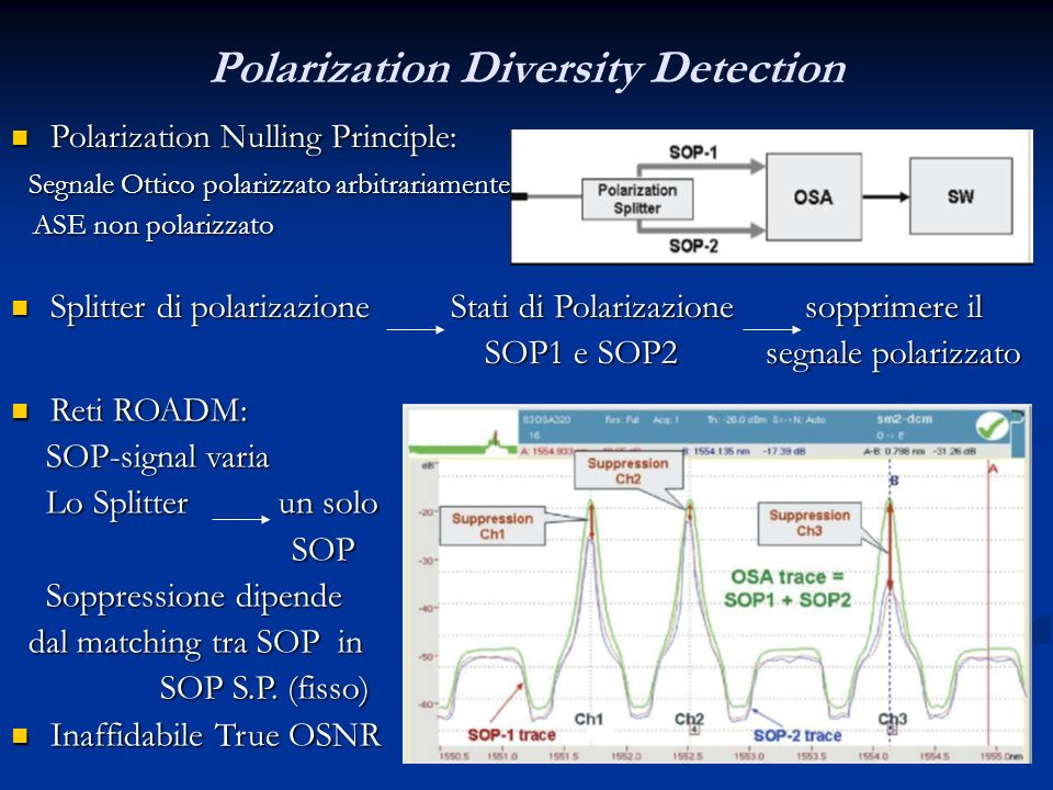 Polarization Diversity Detection