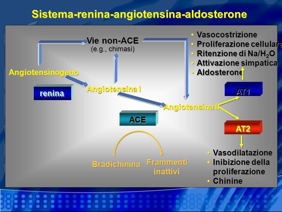 Sistema-renina-angiotensina-aldosterone