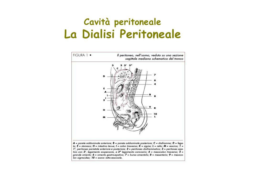 Cavità peritoneale La Dialisi Peritoneale