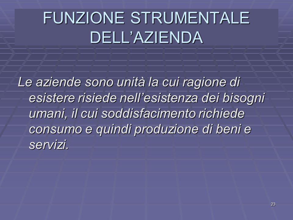 FUNZIONE STRUMENTALE DELL'AZIENDA