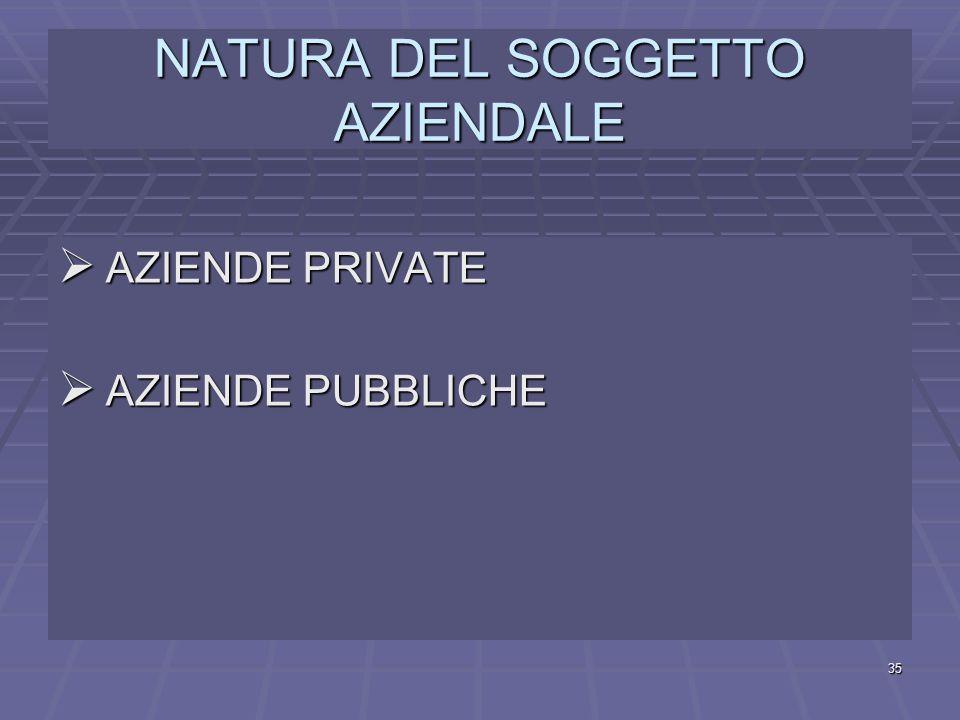 NATURA DEL SOGGETTO AZIENDALE