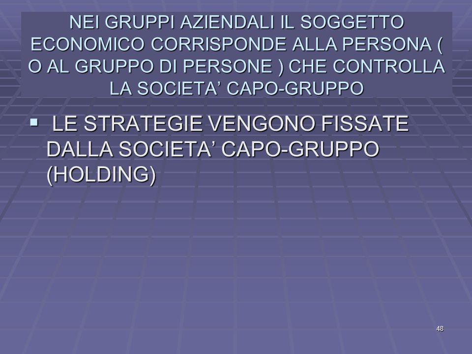 LE STRATEGIE VENGONO FISSATE DALLA SOCIETA' CAPO-GRUPPO (HOLDING)