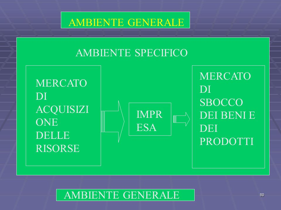 AMBIENTE GENERALE AMBIENTE SPECIFICO. MERCATO DI SBOCCO DEI BENI E DEI PRODOTTI. MERCATO DI ACQUISIZIONE DELLE RISORSE.