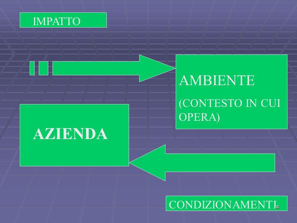 IMPATTO AMBIENTE (CONTESTO IN CUI OPERA) AZIENDA CONDIZIONAMENTI