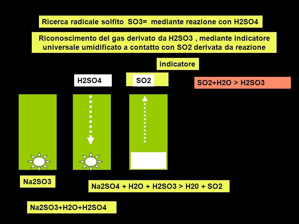 Ricerca radicale solfito SO3= mediante reazione con H2SO4