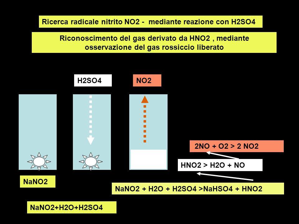 Ricerca radicale nitrito NO2 - mediante reazione con H2SO4