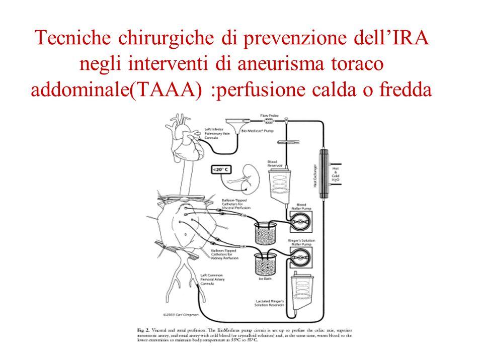 Tecniche chirurgiche di prevenzione dell'IRA negli interventi di aneurisma toraco addominale(TAAA) :perfusione calda o fredda