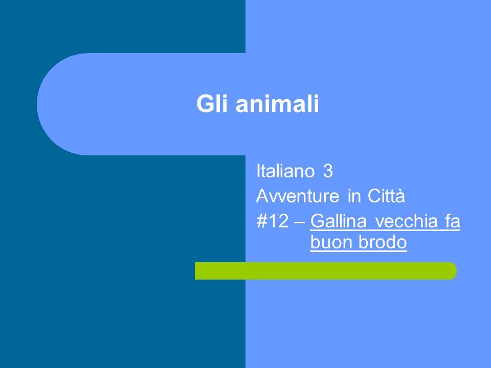 Italiano 3 Avventure in Città #12 – Gallina vecchia fa buon brodo