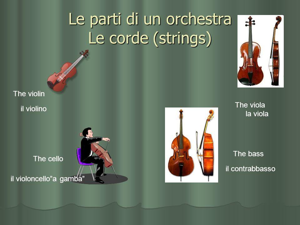 Le parti di un orchestra Le corde (strings)