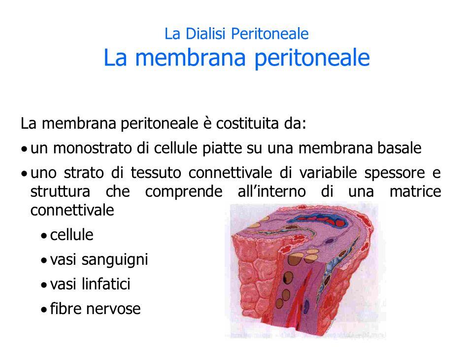 La Dialisi Peritoneale La membrana peritoneale