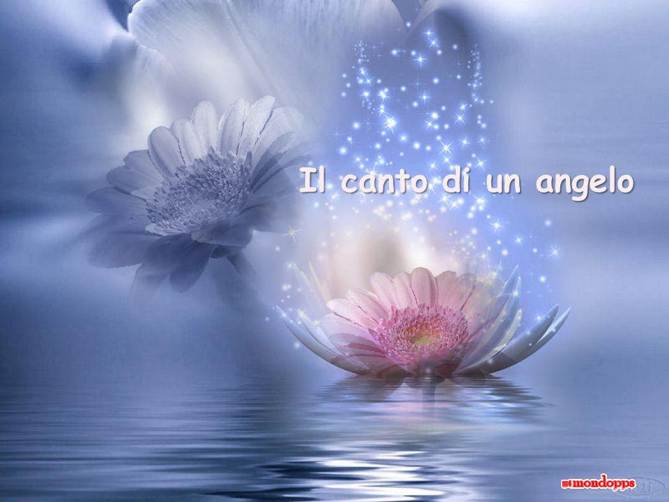 Il canto di un angelo