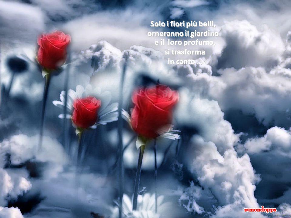Solo i fiori più belli, orneranno il giardino e il loro profumo, si trasforma in canto …