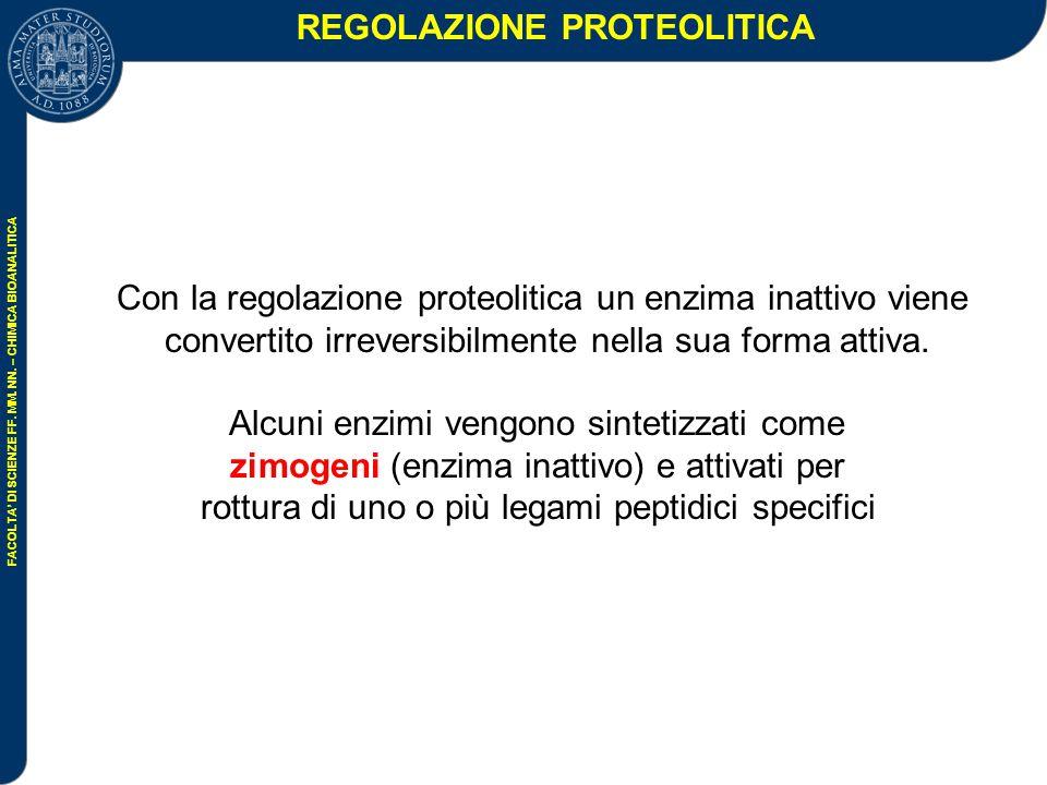 REGOLAZIONE PROTEOLITICA