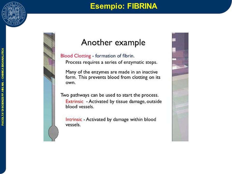 Esempio: FIBRINA