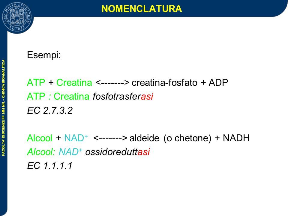 NOMENCLATURA Esempi: ATP + Creatina <-------> creatina-fosfato + ADP. ATP : Creatina fosfotrasferasi.