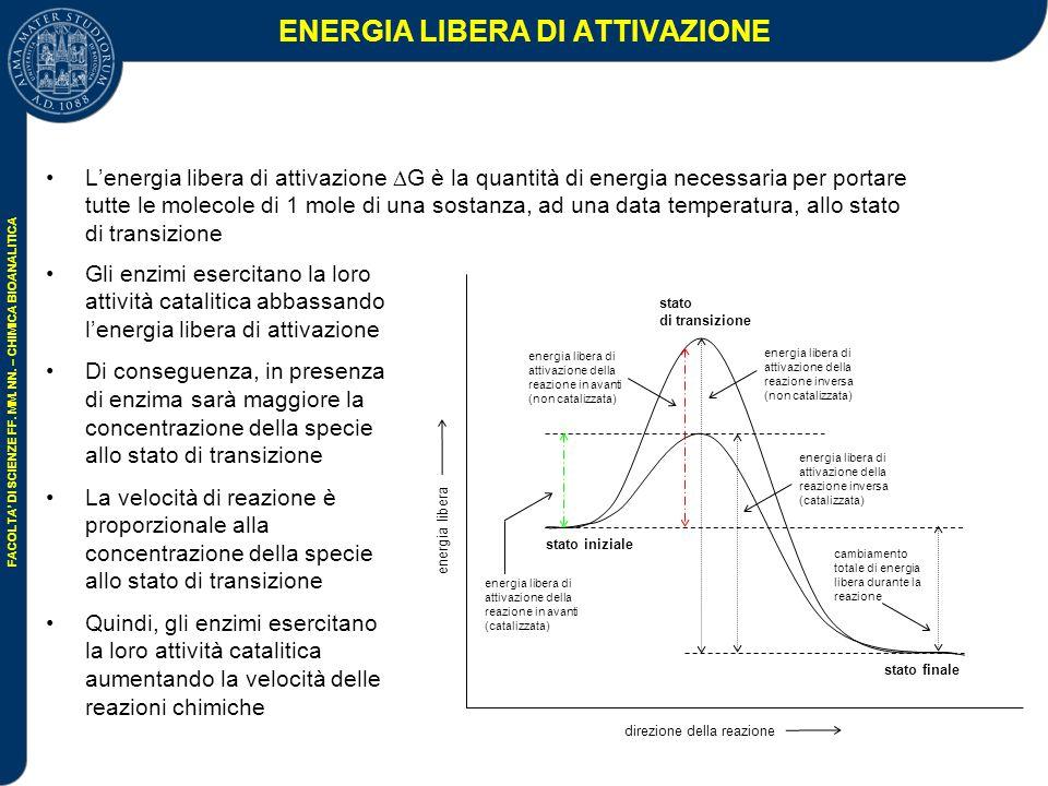 ENERGIA LIBERA DI ATTIVAZIONE