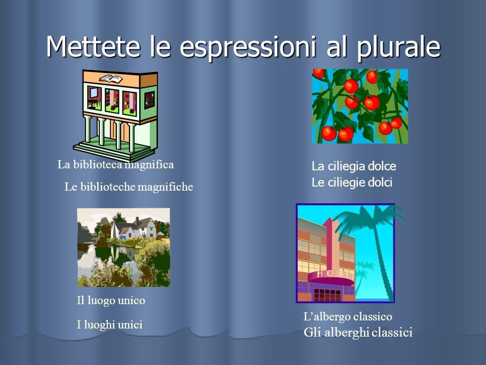 Mettete le espressioni al plurale