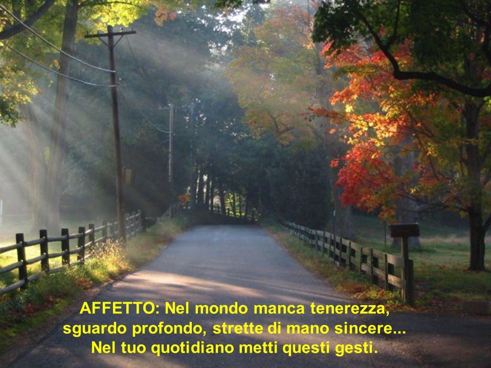 AFFETTO: Nel mondo manca tenerezza, sguardo profondo, strette di mano sincere...