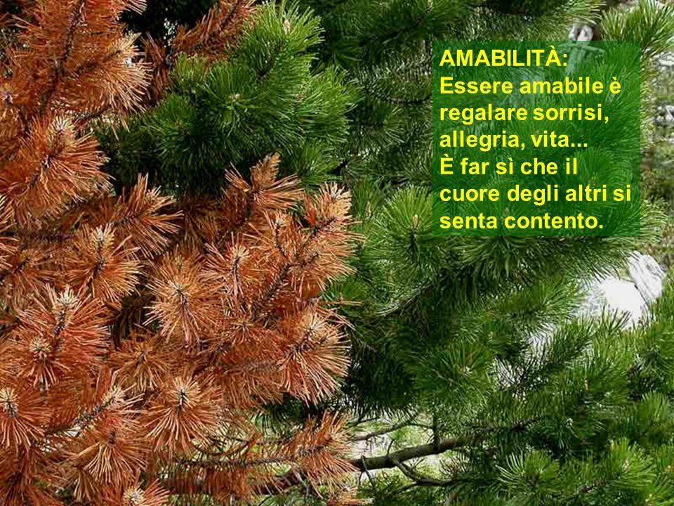 AMABILITÀ: Essere amabile è regalare sorrisi, allegria, vita...