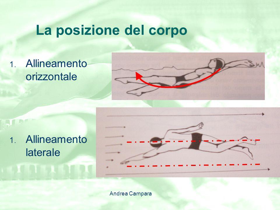 La posizione del corpo Allineamento orizzontale Allineamento laterale