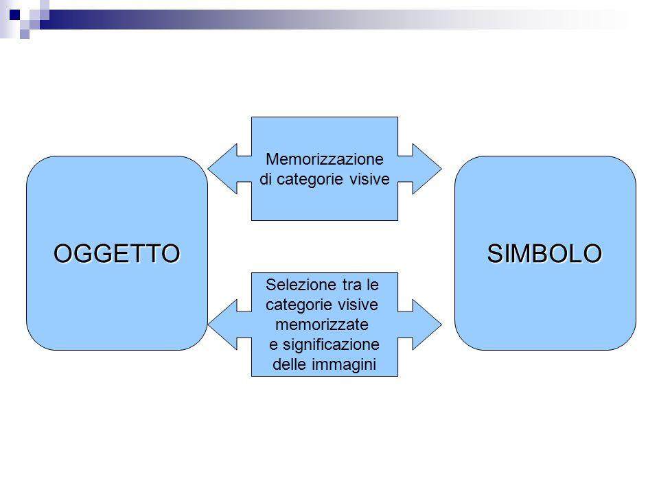 OGGETTO SIMBOLO Memorizzazione di categorie visive Selezione tra le