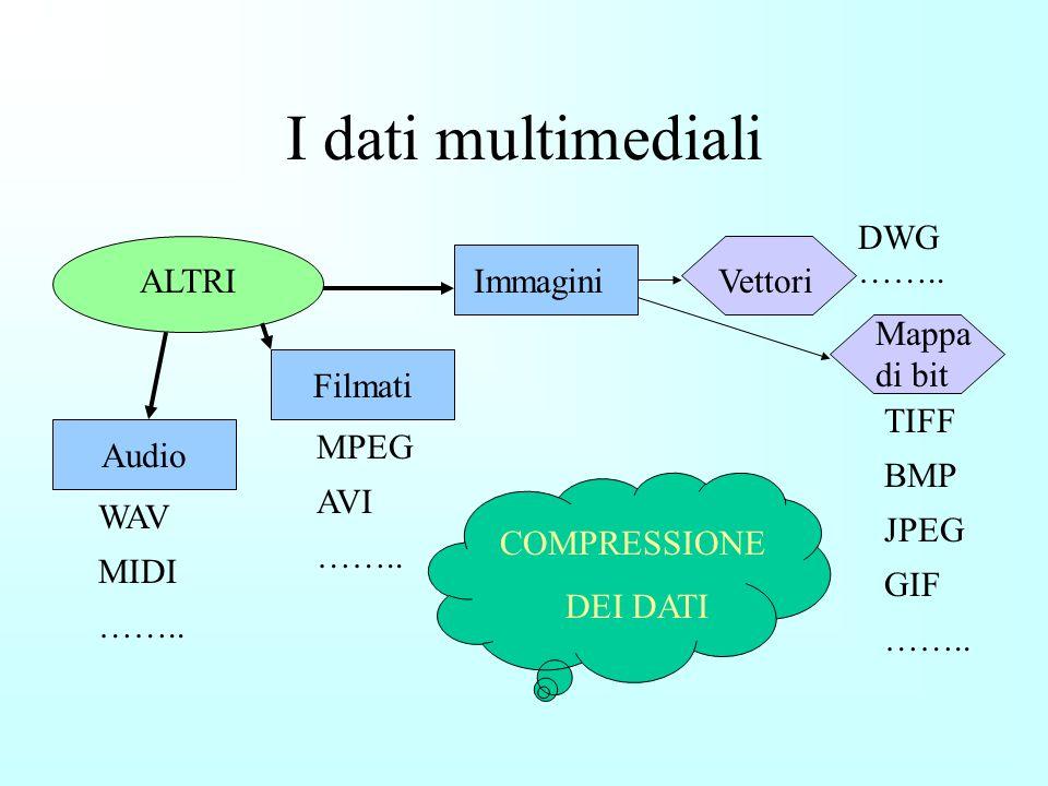 I dati multimediali DWG …….. ALTRI Immagini Vettori Mappa di bit