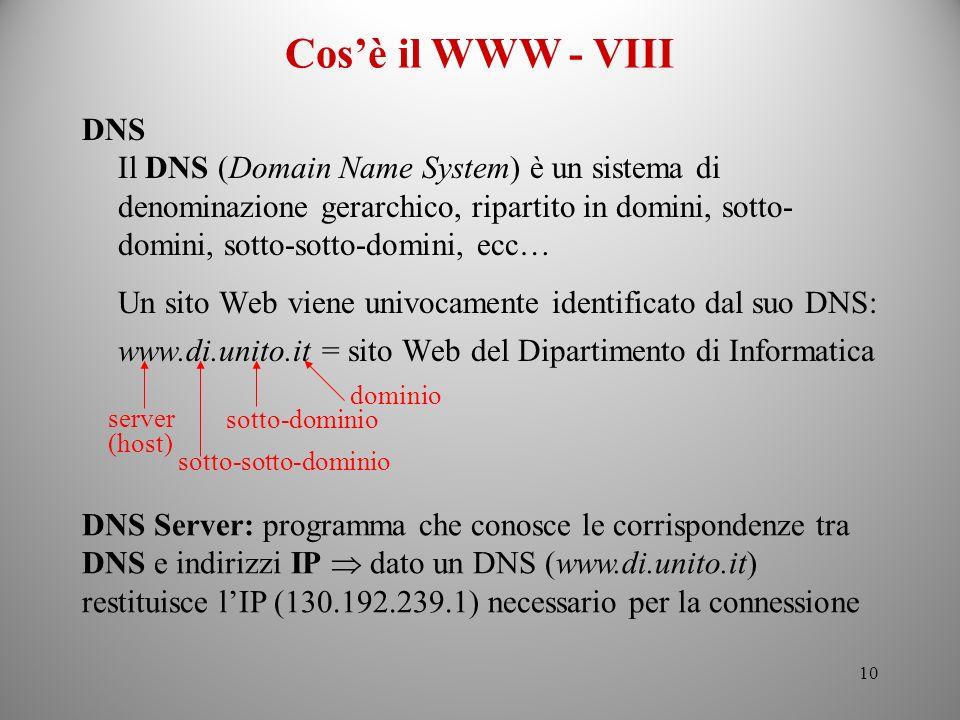 Cos'è il WWW - VIII DNS.