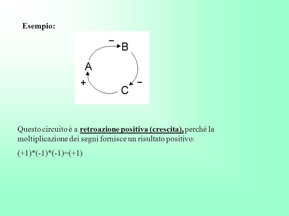 Esempio: Questo circuito è a retroazione positiva (crescita), perché la moltiplicazione dei segni fornisce un risultato positivo: