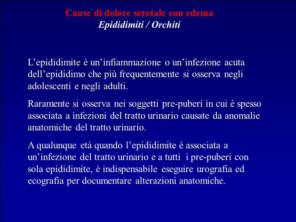 Cause di dolore scrotale con edema Epididimiti / Orchiti