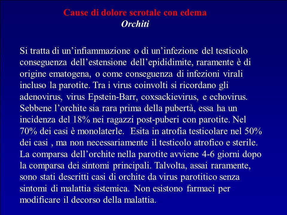 Cause di dolore scrotale con edema Orchiti