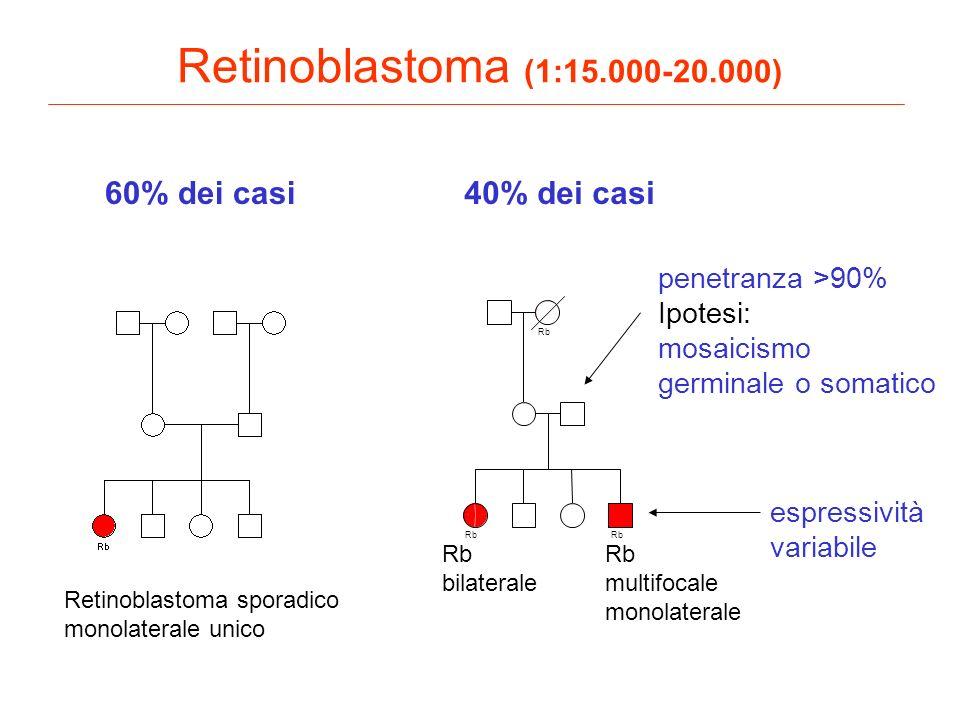 Retinoblastoma (1:15.000-20.000) 60% dei casi 40% dei casi