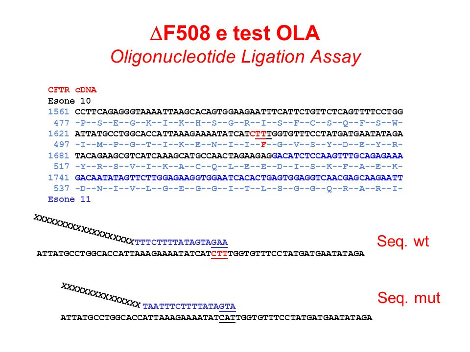 DF508 e test OLA Oligonucleotide Ligation Assay