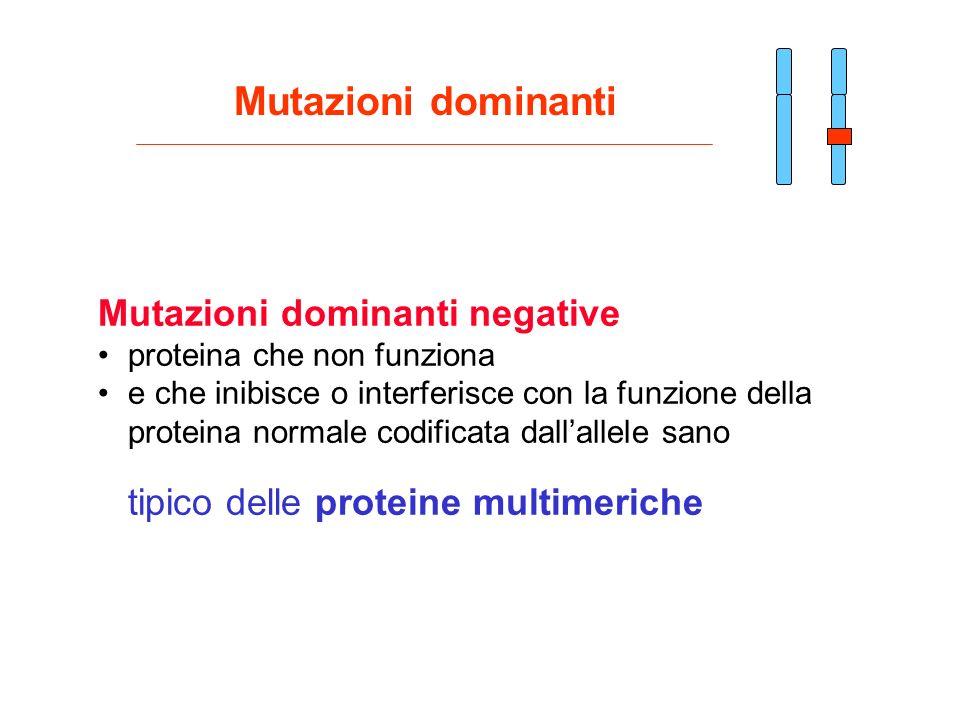 Mutazioni dominanti Mutazioni dominanti negative