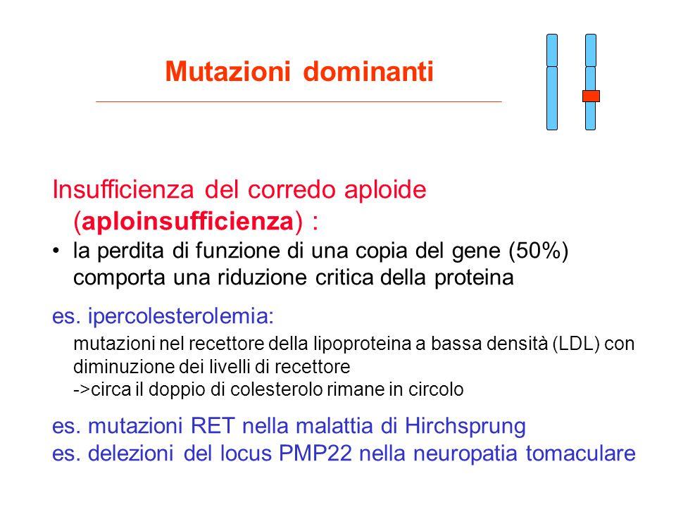Mutazioni dominanti Insufficienza del corredo aploide (aploinsufficienza) :